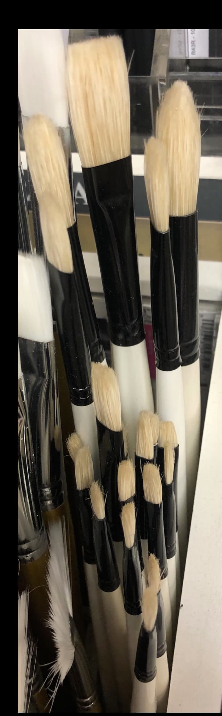 daler rowney hog hair brushes