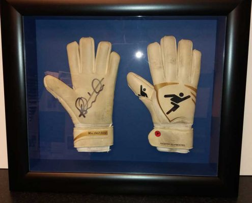 Framed Keepers Gloves