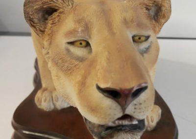 Lioness ears