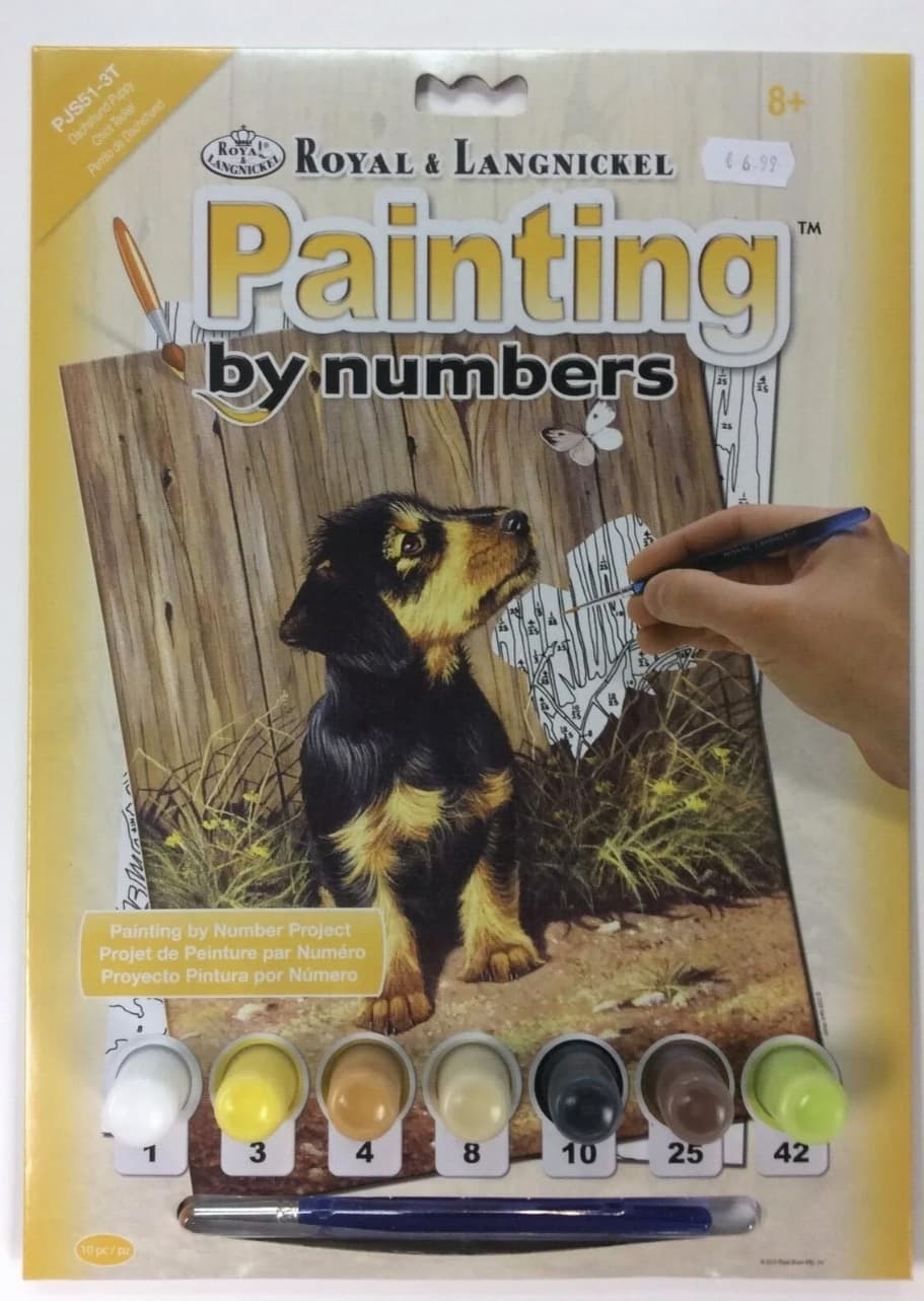 painting by numbers dog