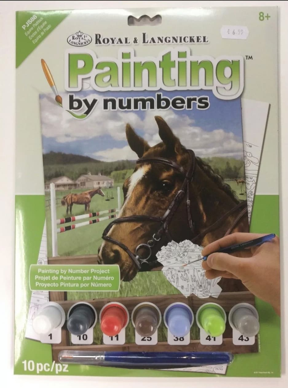 painting by numbers horse