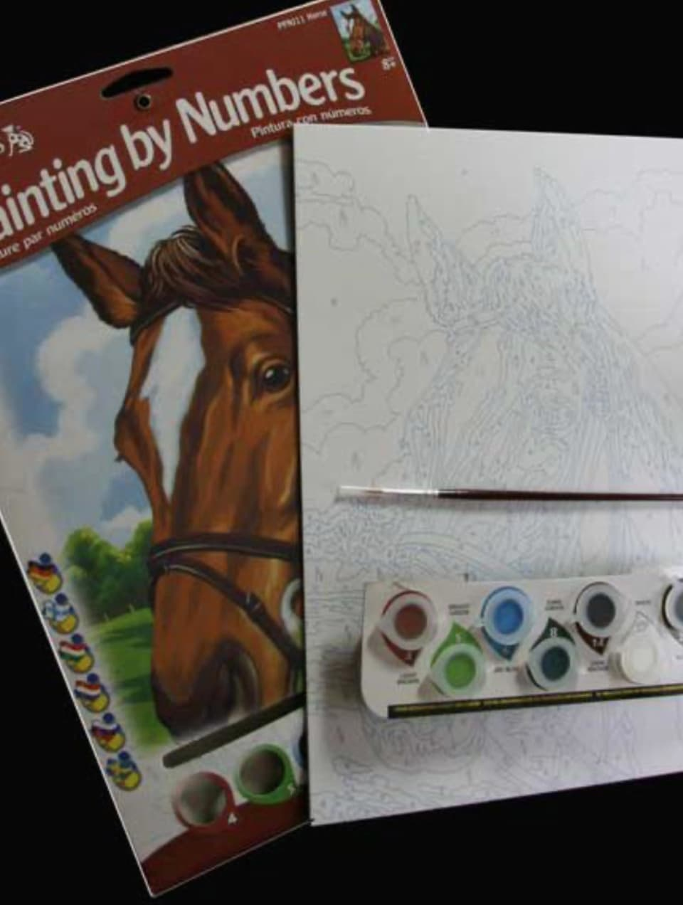 painting-by-numbers horses head